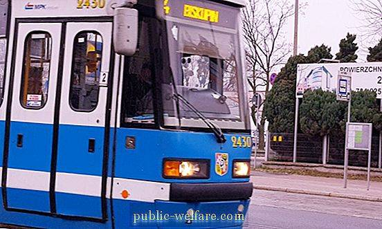 Urban passenger transport: types, routes and rules of use