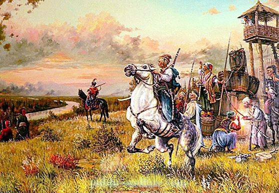Modern Cossacks: types, classification, division, charter, awards history and historical facts