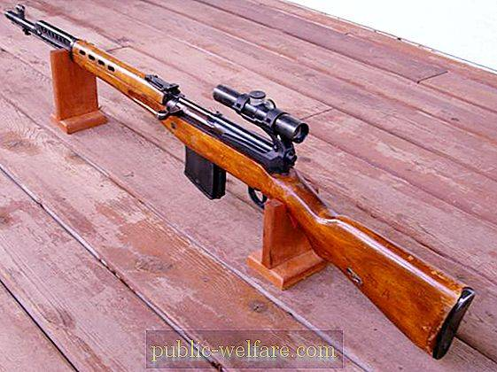 SVT-40 (sniper rifle): reviews of hunters, photos, specifications