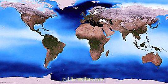 What is the thermohaline circulation of the oceans?