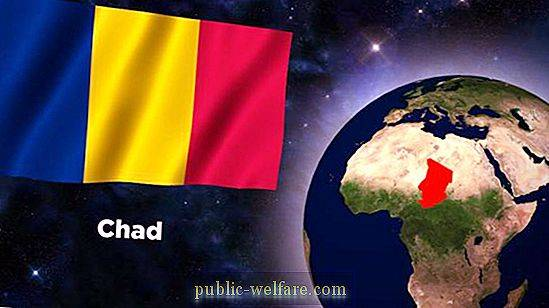 Flag of Chad: description, symbolism, history of creation. What is the difference between the flags of Romania and Chad?