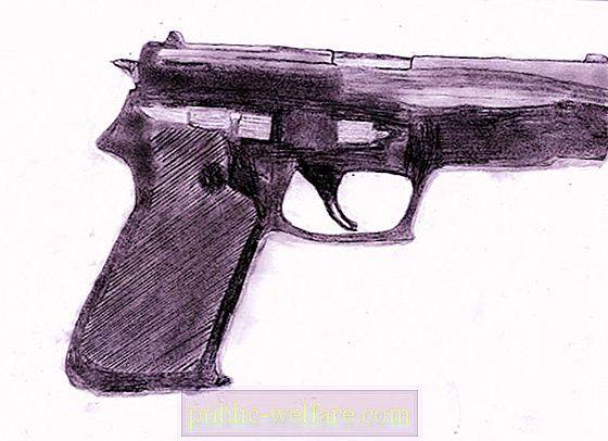 Firearms - what is it? Concept and classification