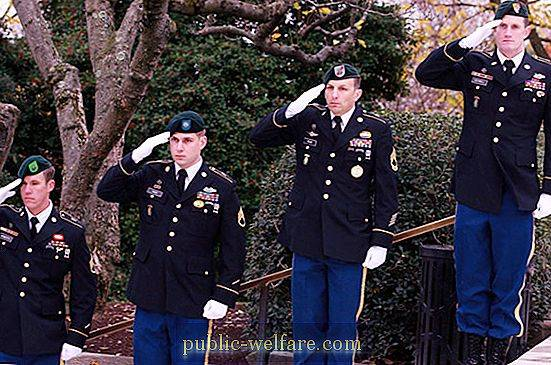 In which troops green berets?