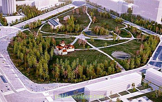 Benoit Garden - a new cultural and educational space in St. Petersburg