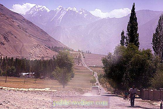 Tajik-Afghan border: border areas, customs and checkpoints, border length, rules for its crossing and security