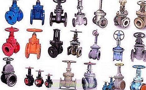 Flanged gate valve: variations and characteristics